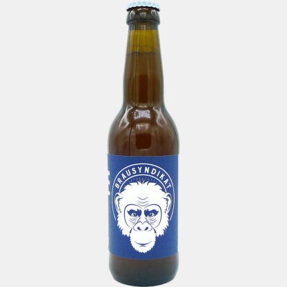 Brausyndikat Pale Ale Bier Flasche